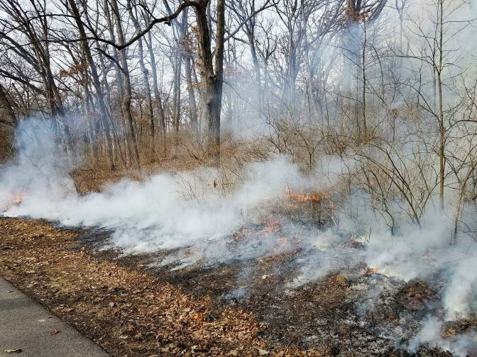 LeRoy Oakes prescribed burn